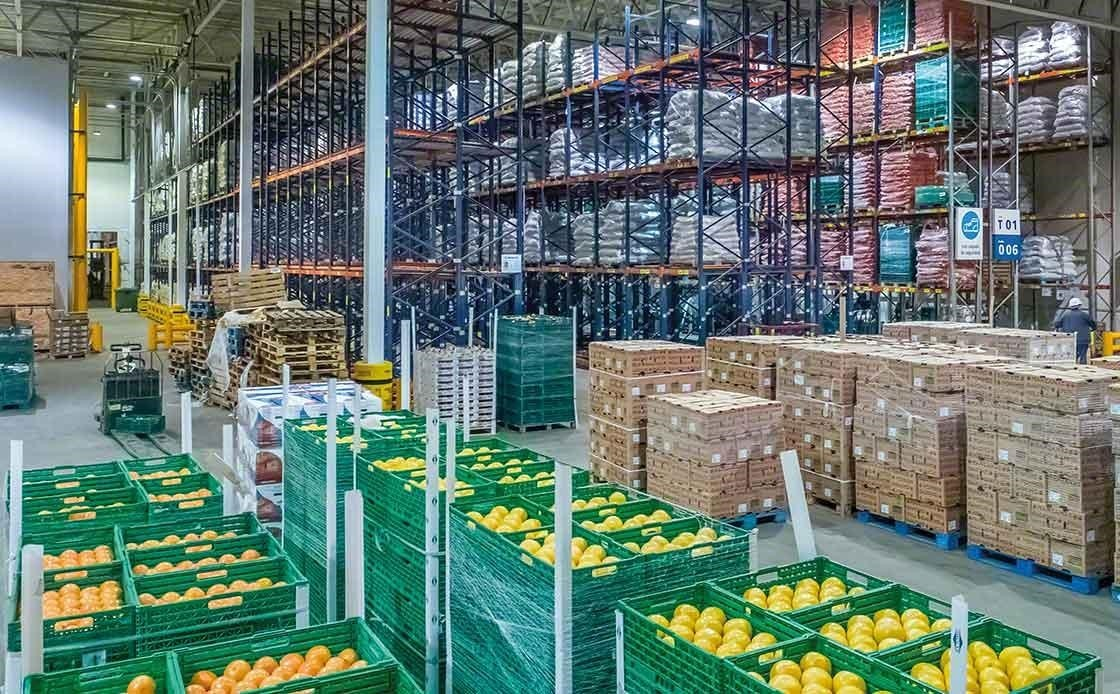 A cadeia de frio num armazém de frutas frescas é essencial para manter a frescura da mercadoria, por esse motivo evitar a quebra é primordial.